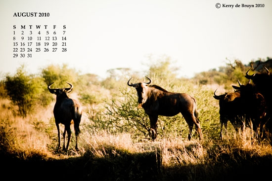 august-2010-wallpaper-2sma