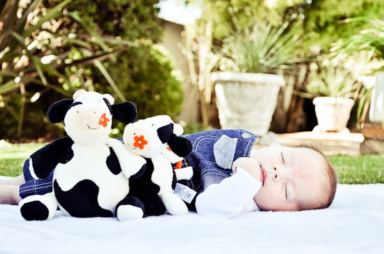 family-shoot-photographer-randburg-21