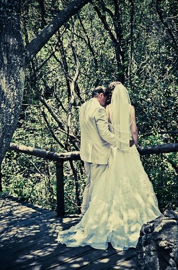 baraka-monkey-sanctuary-wedding-photographer-48