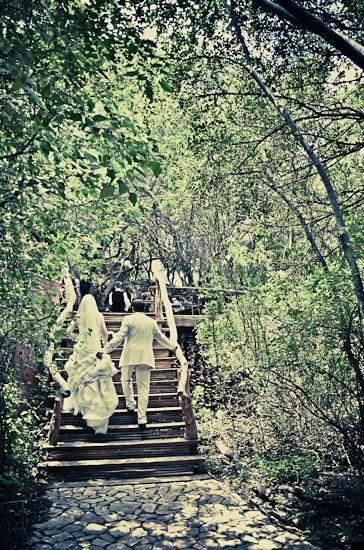 baraka-monkey-sanctuary-wedding-photographer-50