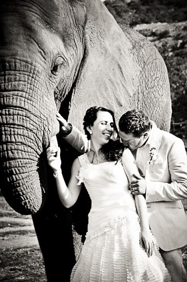 baraka-monkey-sanctuary-wedding-photographer-61