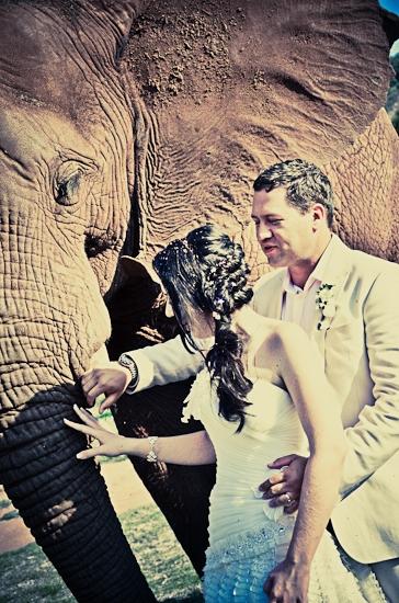 baraka-monkey-sanctuary-wedding-photographer-62