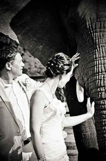 baraka-monkey-sanctuary-wedding-photographer-64
