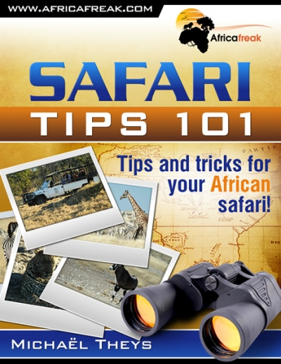 mt-safaritips101-ebook2-large.jpg