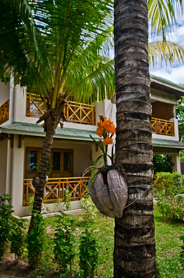 indian-ocean-lodge-photographer-342