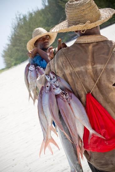 mnemba-hospitality-photography-africa-29