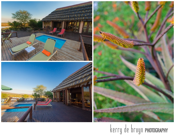 Photography of lodges