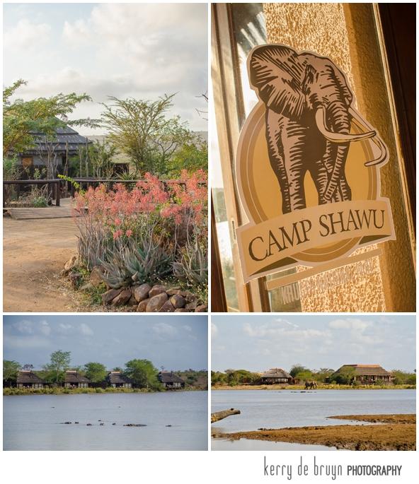 Kruger park photography