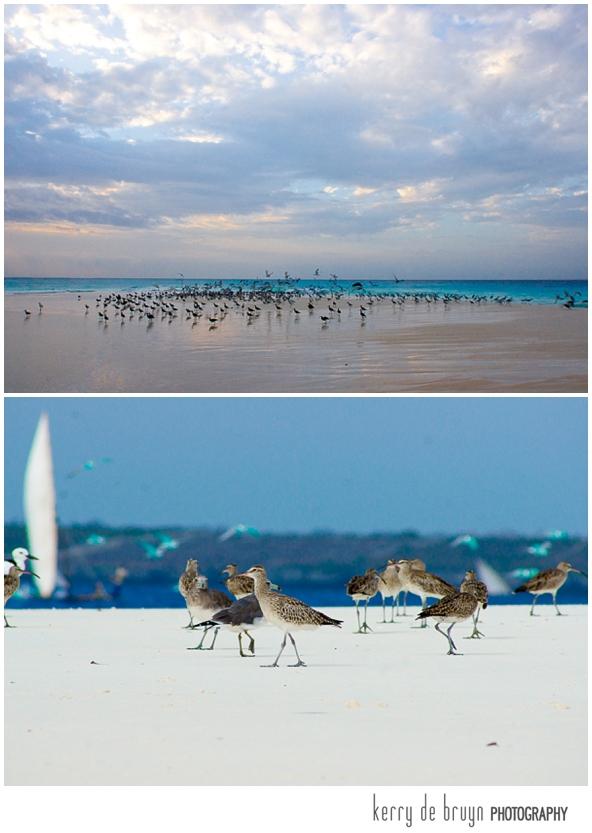 Zanzibar photography