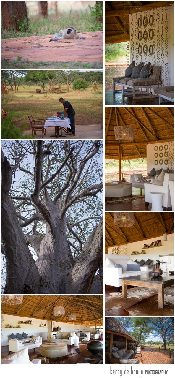 Swala Sanctuary retreats photography