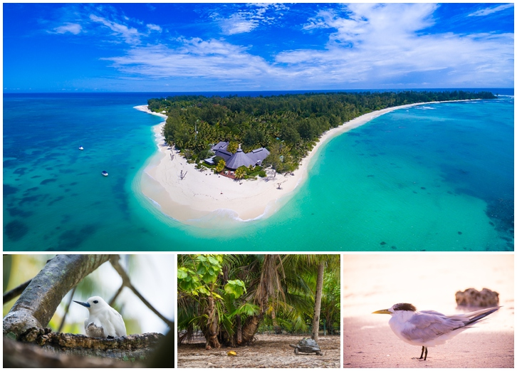Drone photography of Seychelles priavte islands